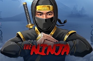 The ninja Video Slot
