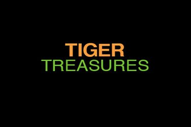 Tiger treasures Slotmaschine